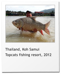 Thailand, Koh Samui Topcats fishing resort, 2012